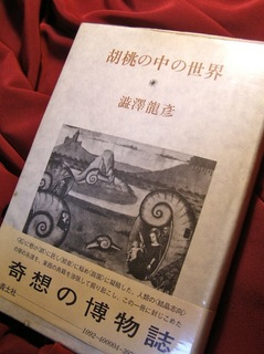 151205-shibusawa.jpg