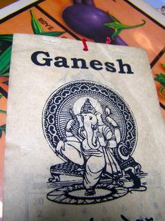 170425-india_ganesh.jpg