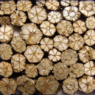 mineralsP4010015.jpg